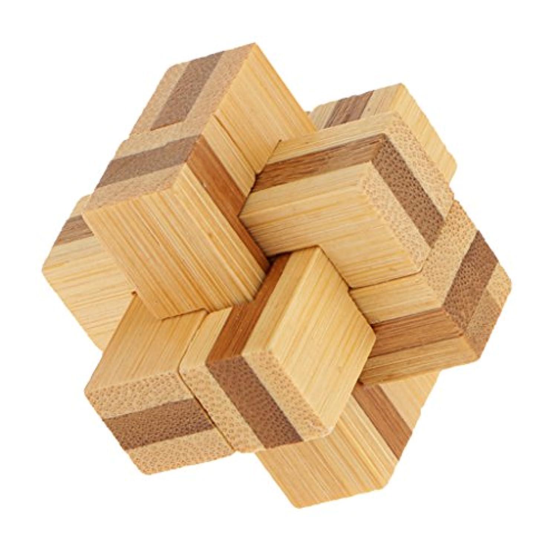 【ノーブランド品】木製 孔明ロック 知育玩具 家庭プレイ キッズ ギフト 古典なおもちゃ