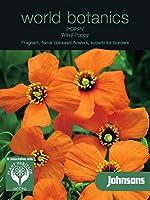 WB 英国ジョンソンズシード Johnsons Seeds world botanics Poppy Wind Poppy=Stylomecon heterophyllum ポピー ウインド・ポピー=ステイロメコン