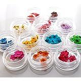 ドライフラワー 12色×各10枚 ケース付き 120枚ネイル レジン 用 押し花 パウダートレーディング