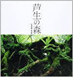 芦生の森―山本卓蔵写真集