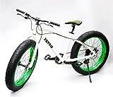 Fatso Bikes Fat Bike ビーチクルーザー自転車 Fatbike ファットバイク White x Green 26インチ