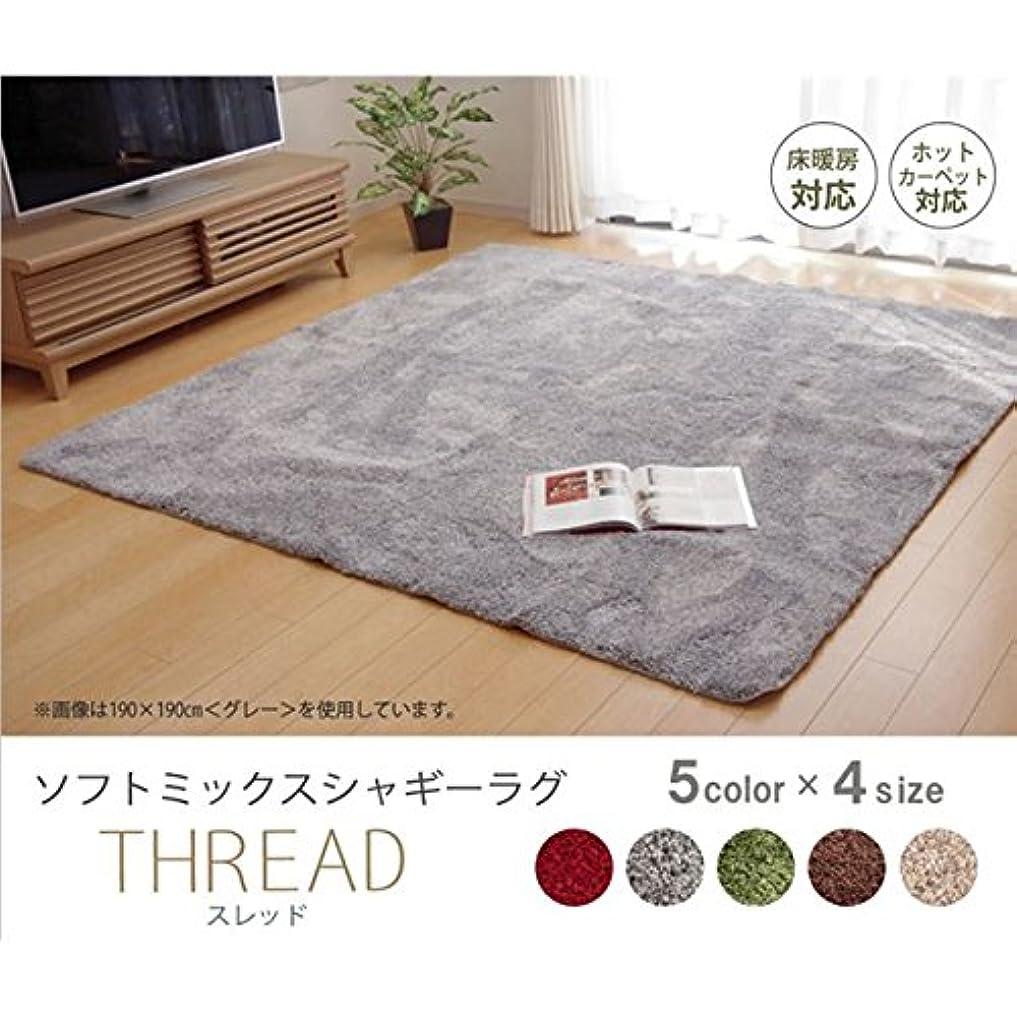 選べる5色 シャギー 洗えるラグ 長方形 『スレッド』 グレー 190×240cm
