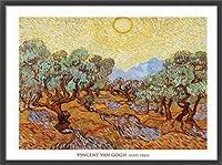 ポスター フィンセント ファン ゴッホ Olive Trees 1889 額装品 ウッドベーシックフレーム(ブラック)