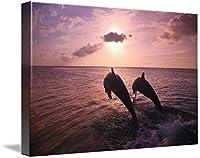"""壁アート印刷entitled Roatan、ベイ諸島、ホンジュラス2つBottlenose Dolp byデザインPics 48"""" x 32"""" 5291242_5_thickbox"""