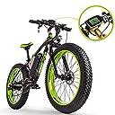 RICH BIT FATBIKE ファットバイク RT022 アシスト自転車 スノーバイク マウンテンバイク 自転車 48V 17AHリチウムイオンバッテリー フルサスペンション 専用充電器付 (グリーン)