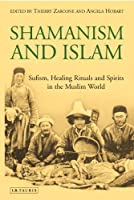 Shamanism and Islam: Sufism, Healing Rituals and Spirits in the Muslim World by Thierry Zarcone Angela Hobart(2017-03-30)