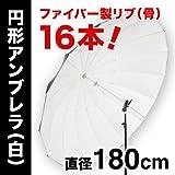 アンブレラPro XLサイズ【白】 (180cm/16本リブ)