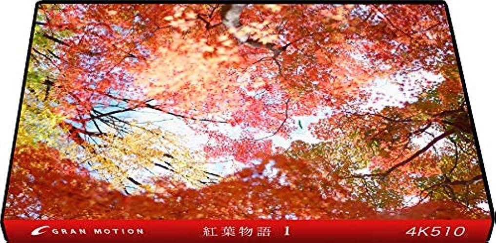 4K510_4K動画素材集グランモーション 紅葉物語1(ロイヤリティフリーDVD素材集)