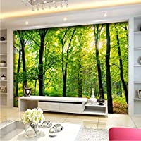 Xbwy カスタム3D壁画壁紙ジャングル熱帯雨林風景テレビ寝室リビングルーム壁画3Dカスタムオフィス壁紙家の装飾-400X280Cm
