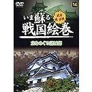 いま蘇る 戦国絵巻 14 京をめぐる諸城郭 SGD-2914 [DVD]