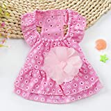 Qiyun Pet Supplies, Cute Lace Princess Dress Pet Clothes Spring Small Dog Skirt Pink M