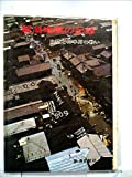 新潟地震の記録 (1964年)