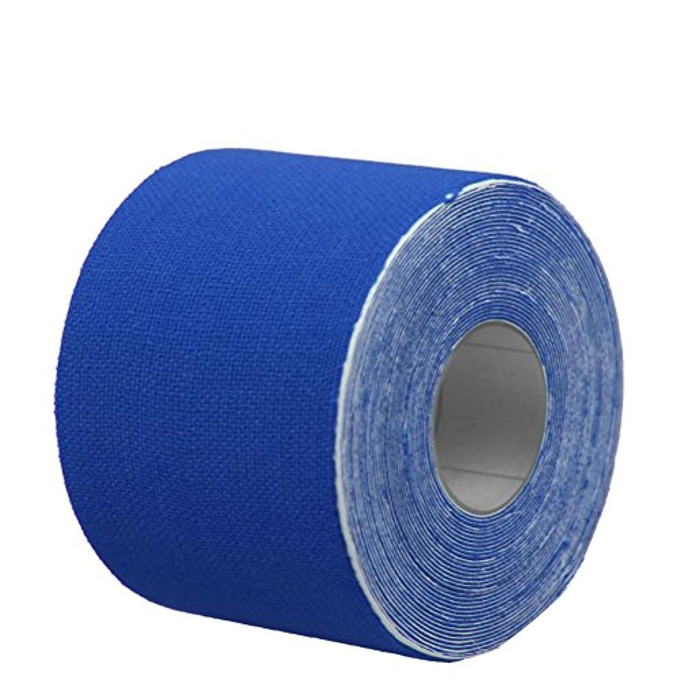 見かけ上湿気の多い用心ROSENICE キネシオロジーテープセットセラピースポーツフィジオセラピー500x2.5cm(濃紺)