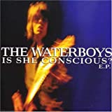 Is She Conscious by Waterboys