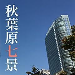 秋葉原七景 〜「Paddyウォーク」シリーズ〜