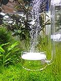 CO2ディフューザー・ビートル 長い柄 ガラス製 (直径4センチ - 90〜120cmサイズの水槽用)