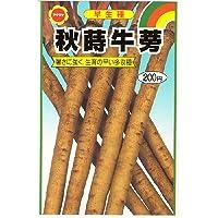 秋蒔牛蒡 (539)
