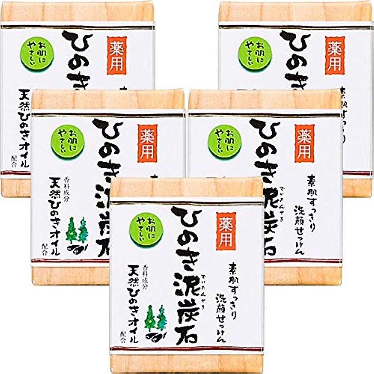 送料石の誇張する薬用 ひのき泥炭石 (75g×5個) 洗顔 石けん [天然ひのきオイル配合] 肌荒れ防止