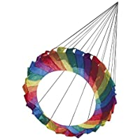HQ Kites Line Laundry 1m Rainbow Generator [並行輸入品]