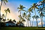 ハワイビーチハウス 風景の写真 キャンバス印刷アートポスター(70cmx105cm)