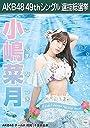 【小嶋菜月 AKB48 チームA】 AKB48 願いごとの持ち腐れ 劇場盤 特典 49thシングル 選抜総選挙 ポスター風 生写真