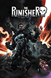 The Punisher: Legacy Vol. 1