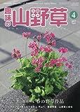 趣味の山野草 2017年 04 月号 [雑誌] 画像
