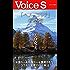 「ヘル・コリア」の恐怖 Voice S