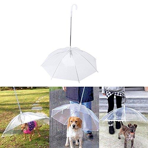 QZSKY ペット用 傘 わんちゃんお散歩用傘 直径75cm 折りたたみ可能 コンパクト収納可能 超撥水 風邪防止 小中型犬と猫に適用 雨の日も濡れずに散歩でき