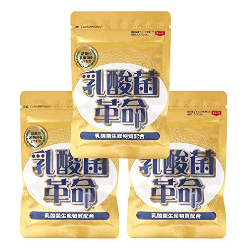 気分が悪い蓄積する雲健康いきいき倶楽部 乳酸菌革命 3袋セット (62粒入×3袋) 乳酸菌 サプリ