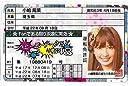 ラミネート 免許証カード AKB48 小嶋陽菜 「ヘビーローテーション」ver, ファングッズ