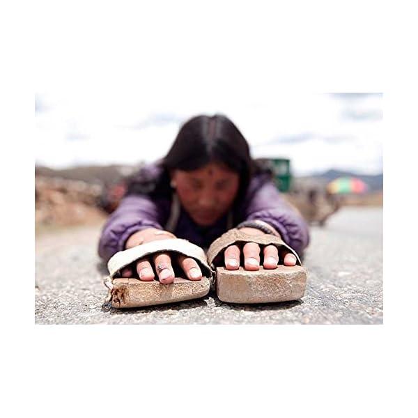 ラサへの歩き方 祈りの2400km [DVD]の紹介画像4