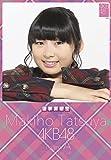クリアファイル付 (卓上)AKB48 達家真姫宝 カレンダー 2015年