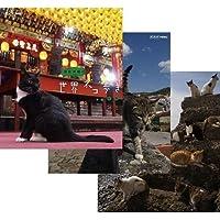 岩合光昭の世界ネコ歩き 第3弾 ブルーレイ 全3枚セット【NHKスクエア限定商品】