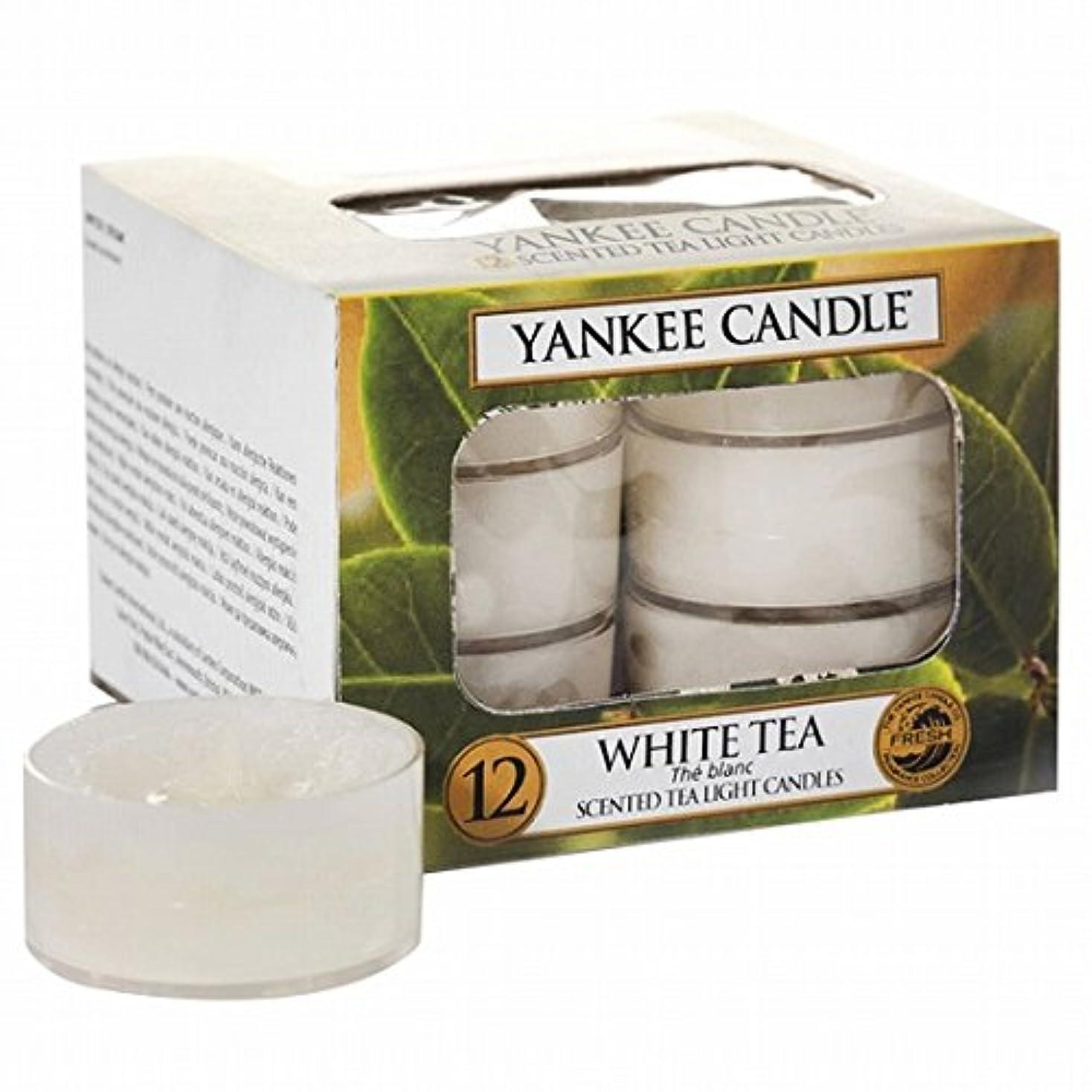 エネルギー示すブラウンヤンキーキャンドル(YANKEE CANDLE) YANKEE CANDLE クリアカップティーライト12個入り 「ホワイトティー」