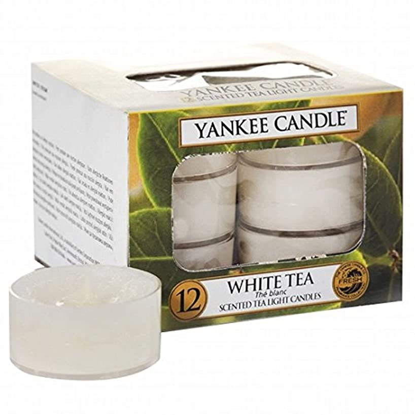 アクティブファイターカップヤンキーキャンドル(YANKEE CANDLE) YANKEE CANDLE クリアカップティーライト12個入り 「ホワイトティー」