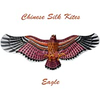 3d Extra Large Brown Eagle Kite – ChineseハンドメイドシルクKites