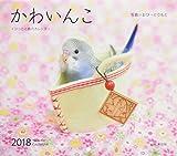 カレンダー2018 かわいんこ インコと小鳥のカレンダー (ヤマケイカレンダー2018)