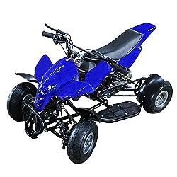 ミニ 四輪バギー 50cc 45km h エンジン ミニカー アウトドア 混合ガソリン ブラック ホワイト レッド ブルー【レース サーキット ご自宅でお庭でレース!】