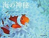 海の神秘 Calendar 2018  ([カレンダー])