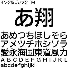 イワタ新ゴシック体M TrueType Font for Windows [ダウンロード]