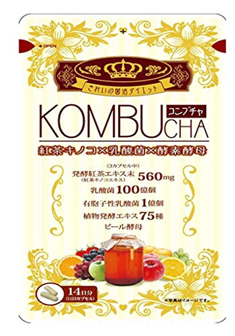 限り上陸促すユーワ KOMBUCHA 42粒×10個セットコンブチャ