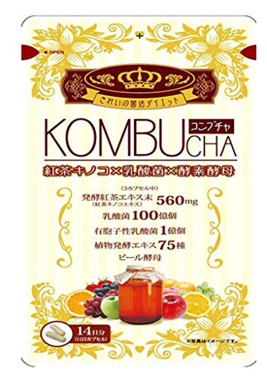 差別的フィットネス高価なユーワ KOMBUCHA 42粒×10個セットコンブチャ