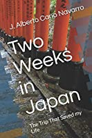 Two Weeks in Japan: The Trip That Saved my Life