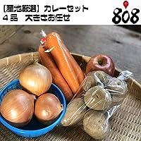 【産地厳選】カレーセット4品