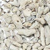 (海水魚 ろ材)バクテリア付き ばくとサンドXLサイズ ネット入り 3L(約2.3kg) 本州・四国限定[生体]