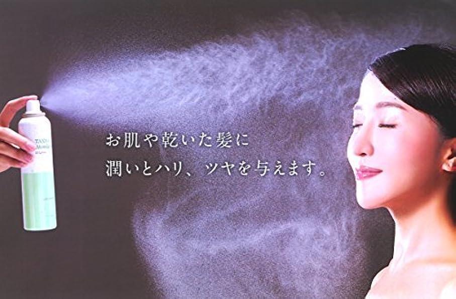 凝視前提条件ステレオ炭酸ミスト ECローション