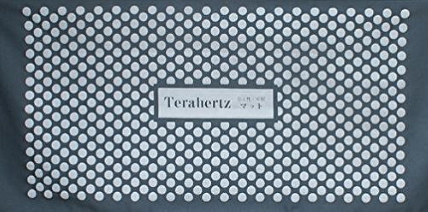 部屋を掃除するラフ睡眠ポーンDOKA-SHOP 最高級品【テラヘルツ万能マット】半永久的に効果が持続 実用新案登録 第3201546号