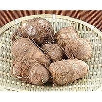 【NPO無肥研認定】 無施肥無農薬栽培(転換中) 里芋 2kg 【小米茶園】