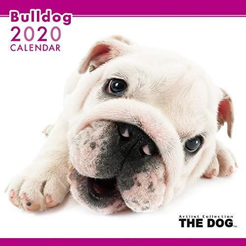 THE DOG カレンダー ブルドッグ 2020年